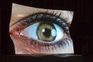 Konferencja Alcon Hoya Transitions Vision&Fashion 2013